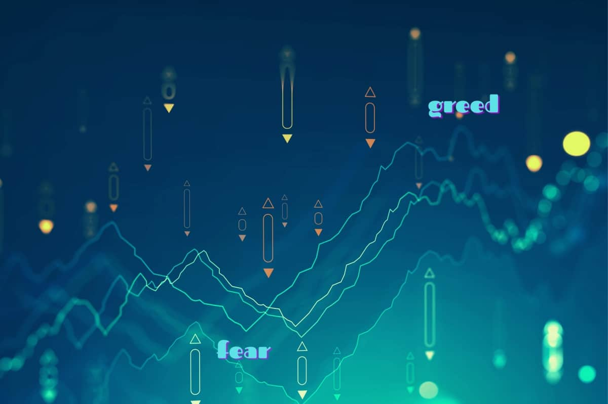 Fear and greed in stock market - Should i invest now - Indian stock markets